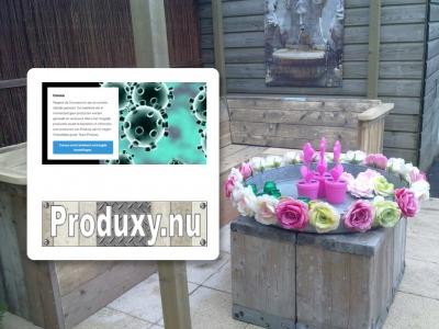 Produxy veelzijdige webshop van VSO school
